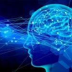 オナニーの仕方で分かる!男性脳と女性脳の違い!